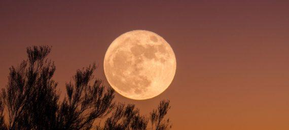 Maandelijks volle maan mantra chant bij Nyingma Centrum Nederland