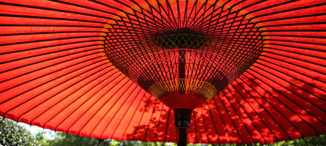 Jaartraining Boeddhistische Studie en Beoefening V